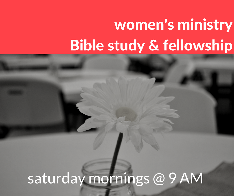 Join the Ladies of Tampa Shores for Bible study and fellowship